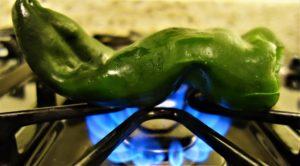 stuffed pobalno peppers