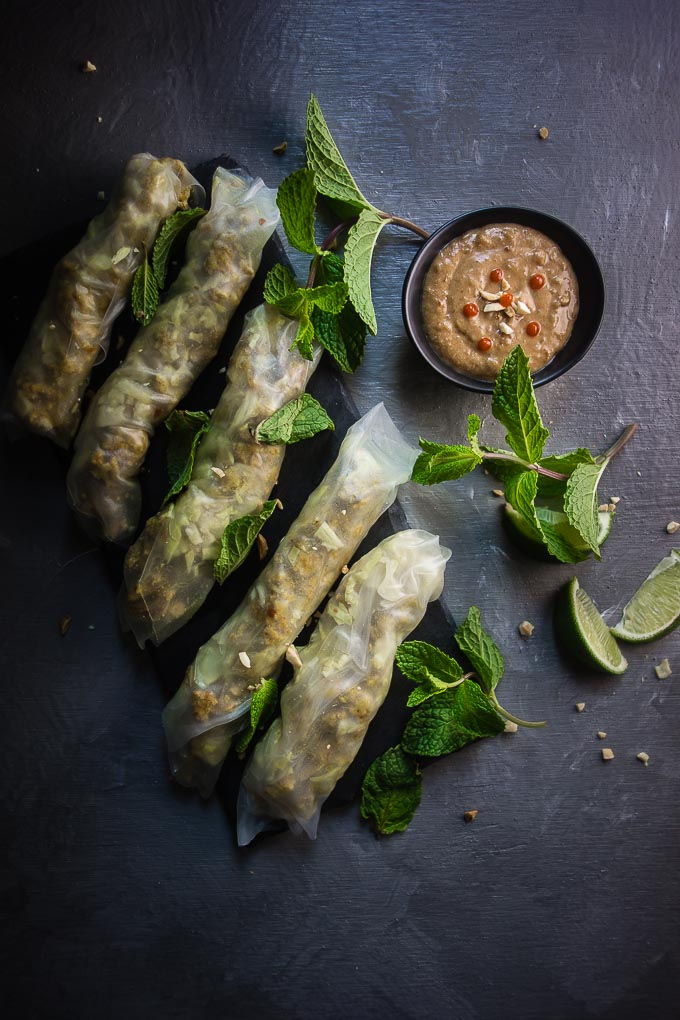 moody lemongrass chicken spring roll photography