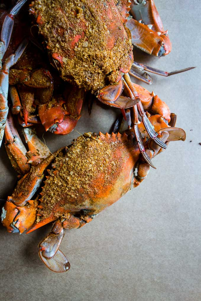 seasoned whole crabs on a table, best crabs in baltimore