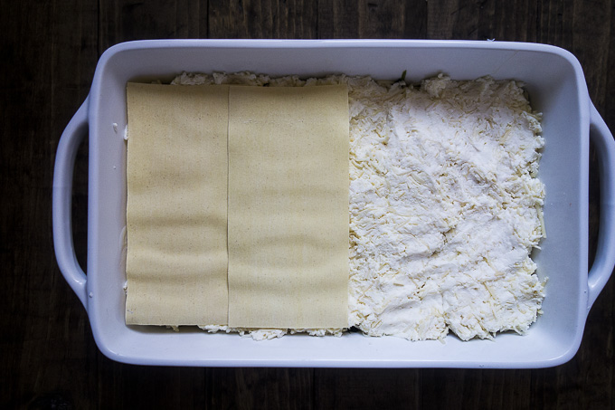 cheese layer in bechamel lasagna