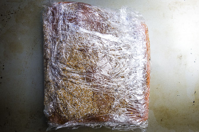 salmon coated in cure and wrapped in plastic