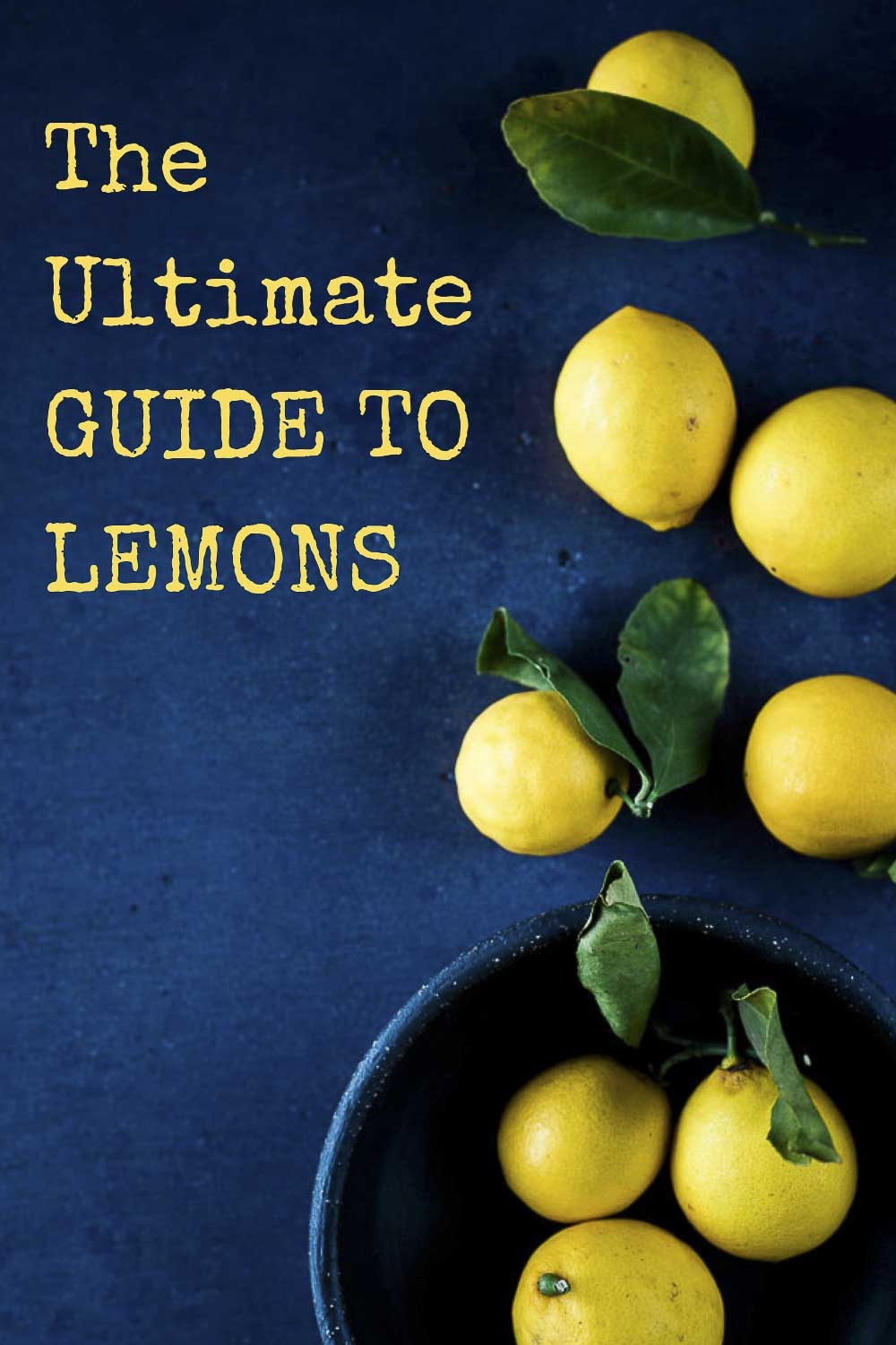 A Complete Guide to Lemon Uses in Cooking