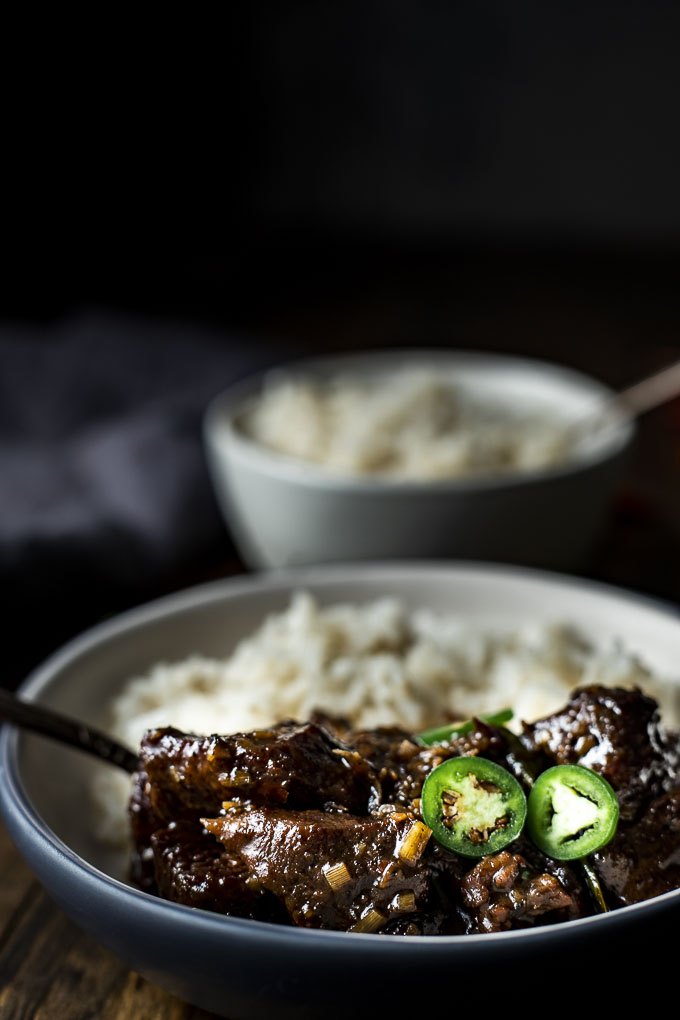 close up side view of beef rendang in a bowl with rice