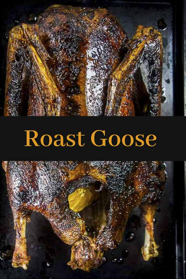 Roast Goose Recipe with Honey Orange Glaze