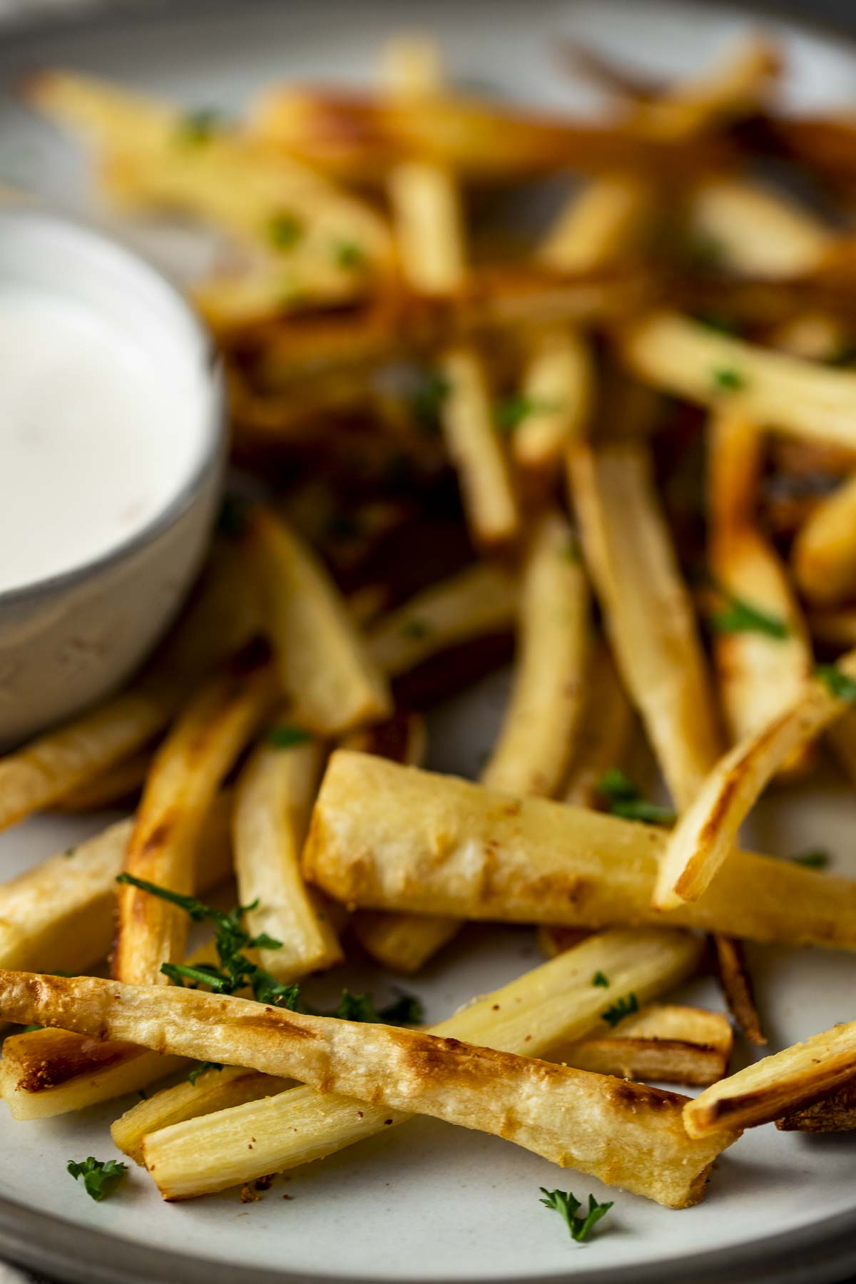 french fries with dipping sauce in a side bowl