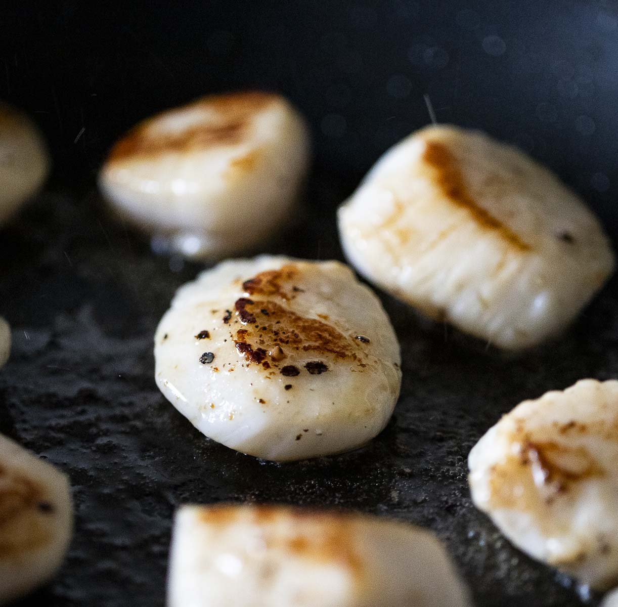 scallops being browned in a skillet