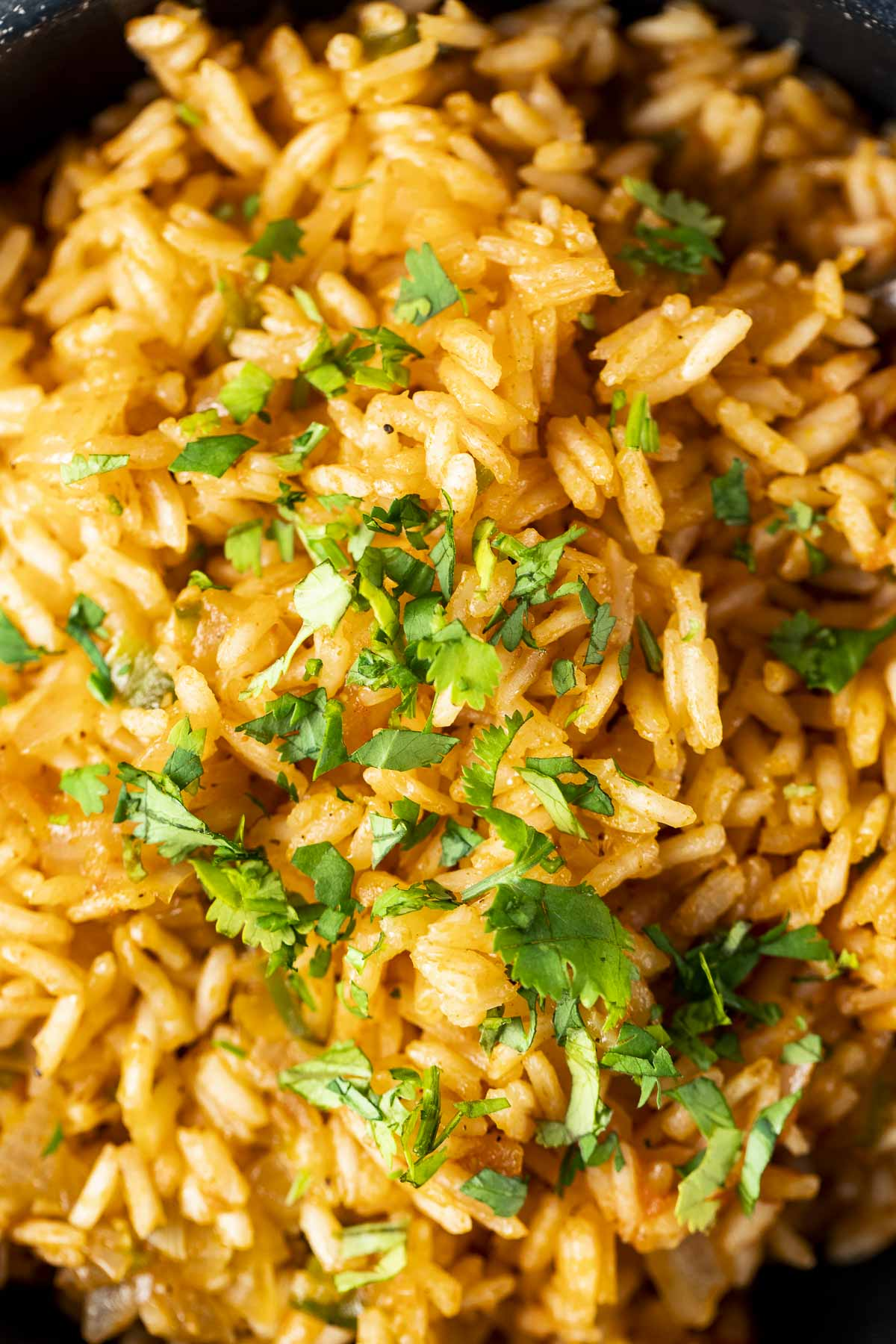 Close up of rice cooked in the pressure cooker.