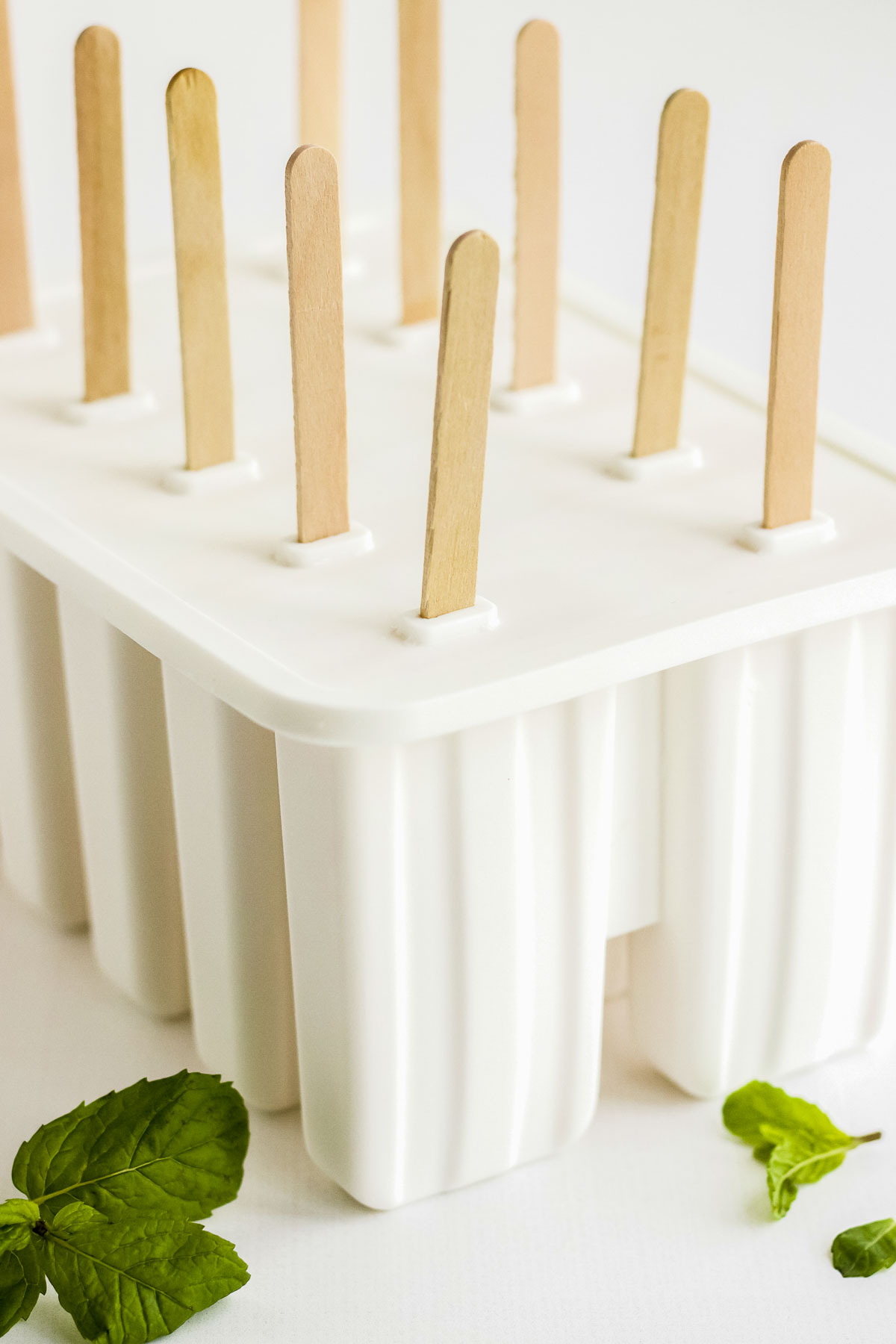 Set of 10 popiscle mold.