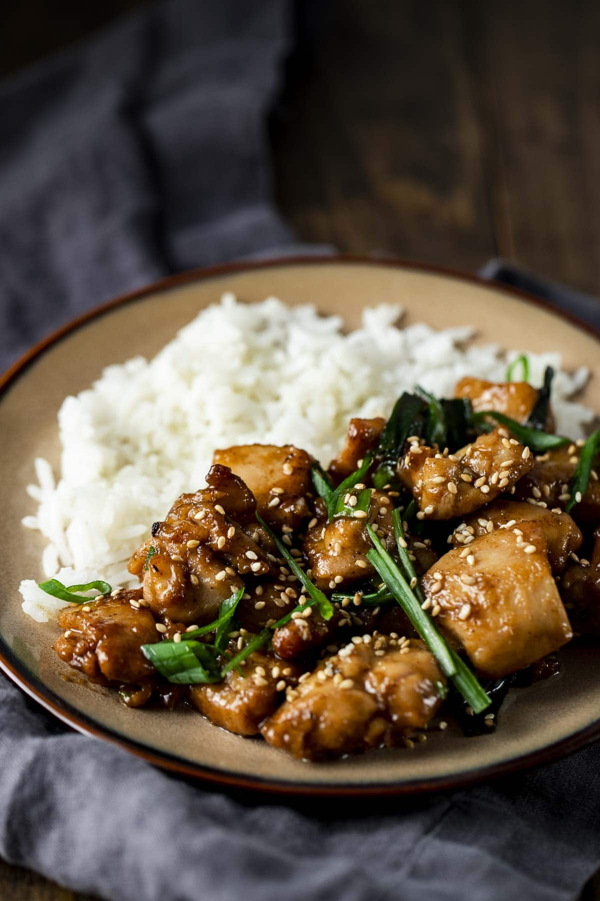 Plate of rice with shanghai chicken and green onions.