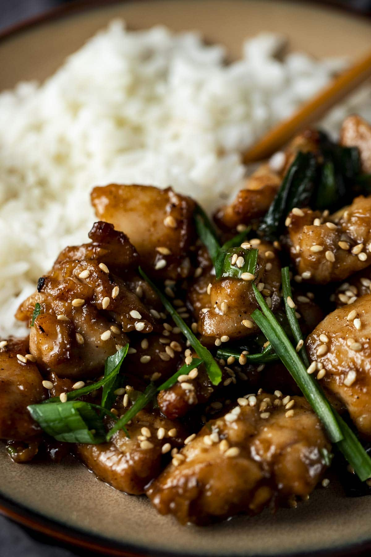 Close up of shanghai chicken with green onions.