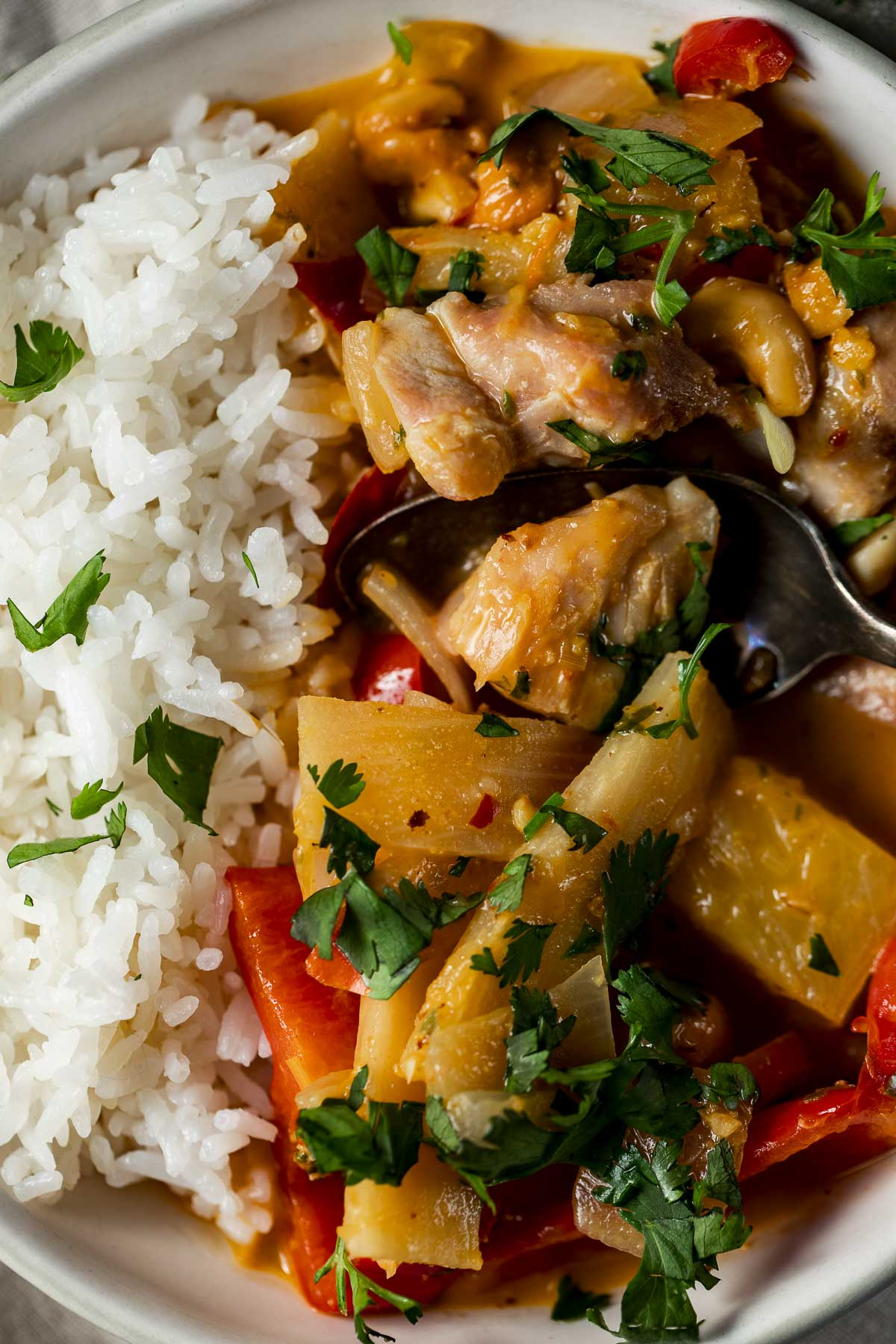 Close up of pineapple chicken curry with rice.