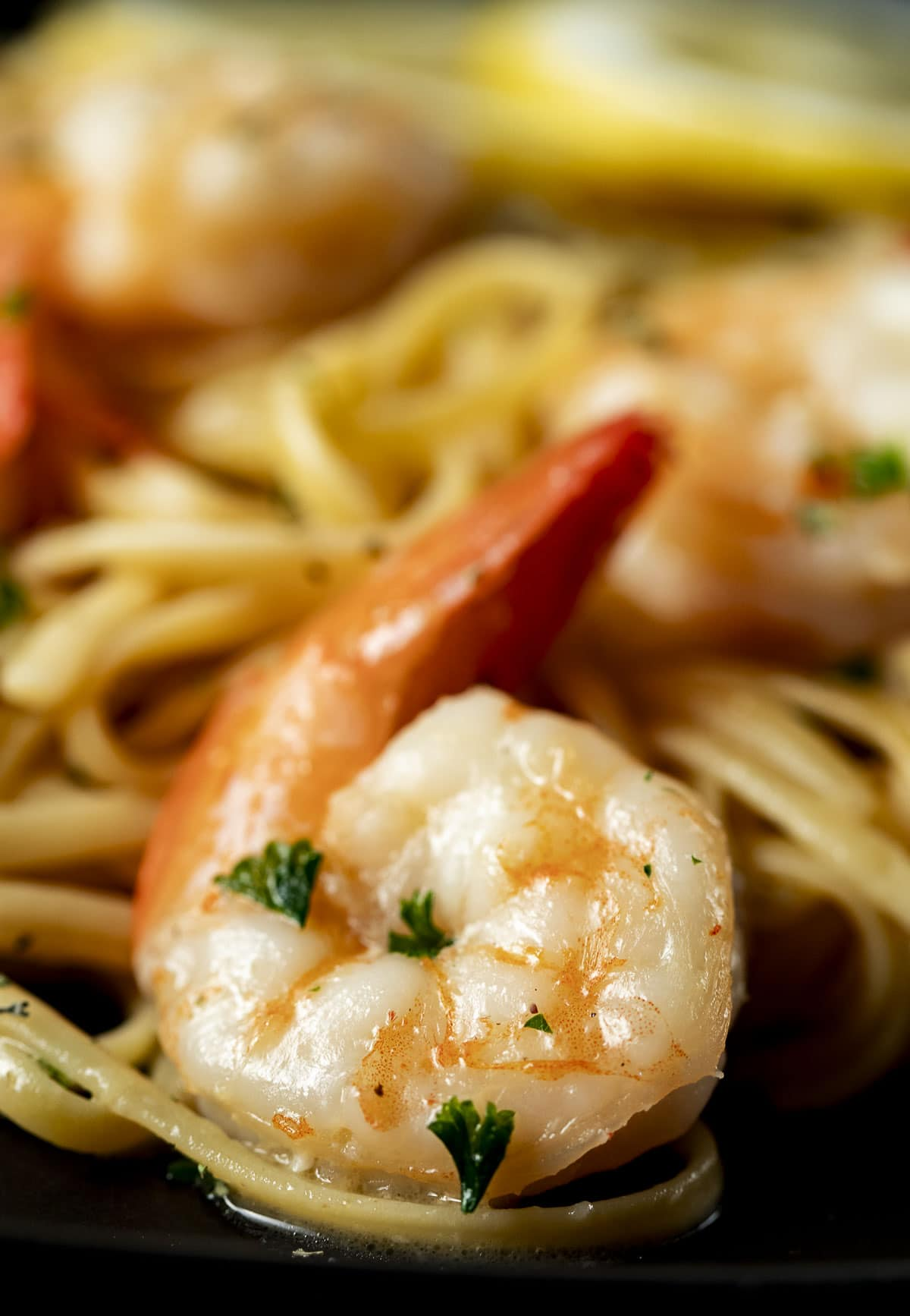 Close up of a cooked shrimp on linguine.